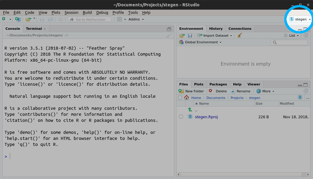 Screenshot of RStudio project set to stegen